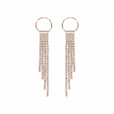 Circle & Sparkle Drop Earrings RG